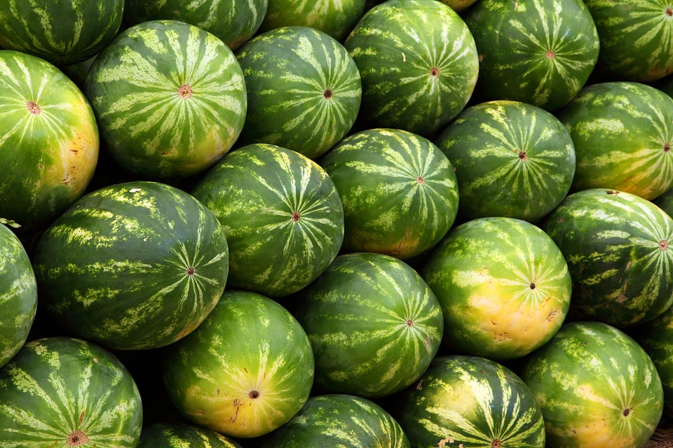 watermeloen hardlopen
